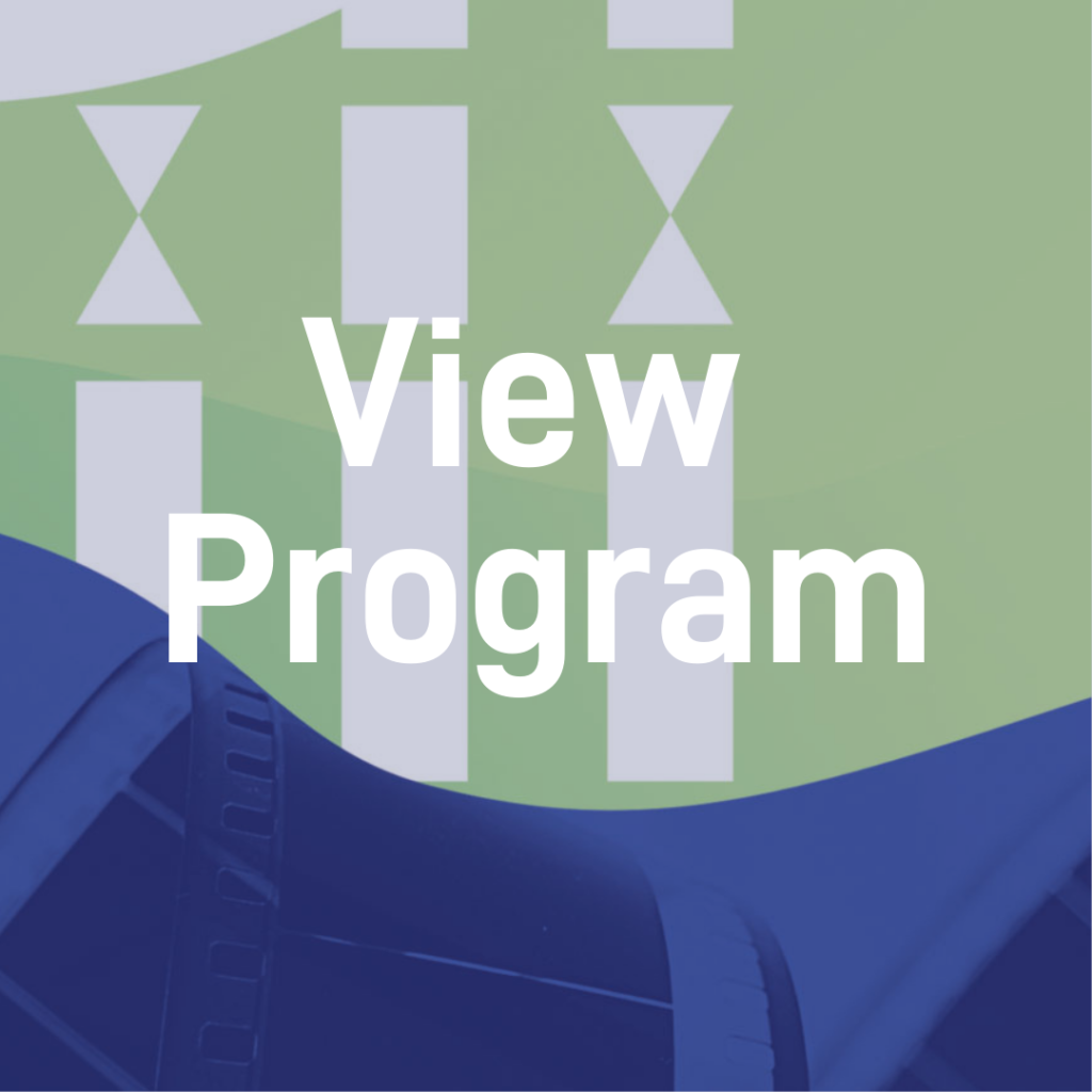 HIFF41 View Program